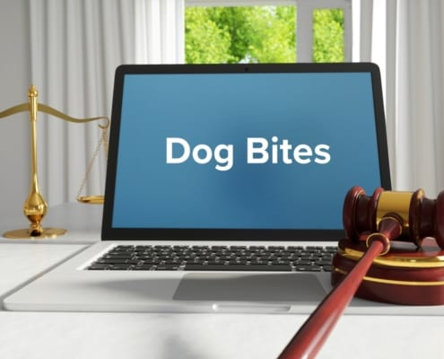 homeowners insurance after dog bites